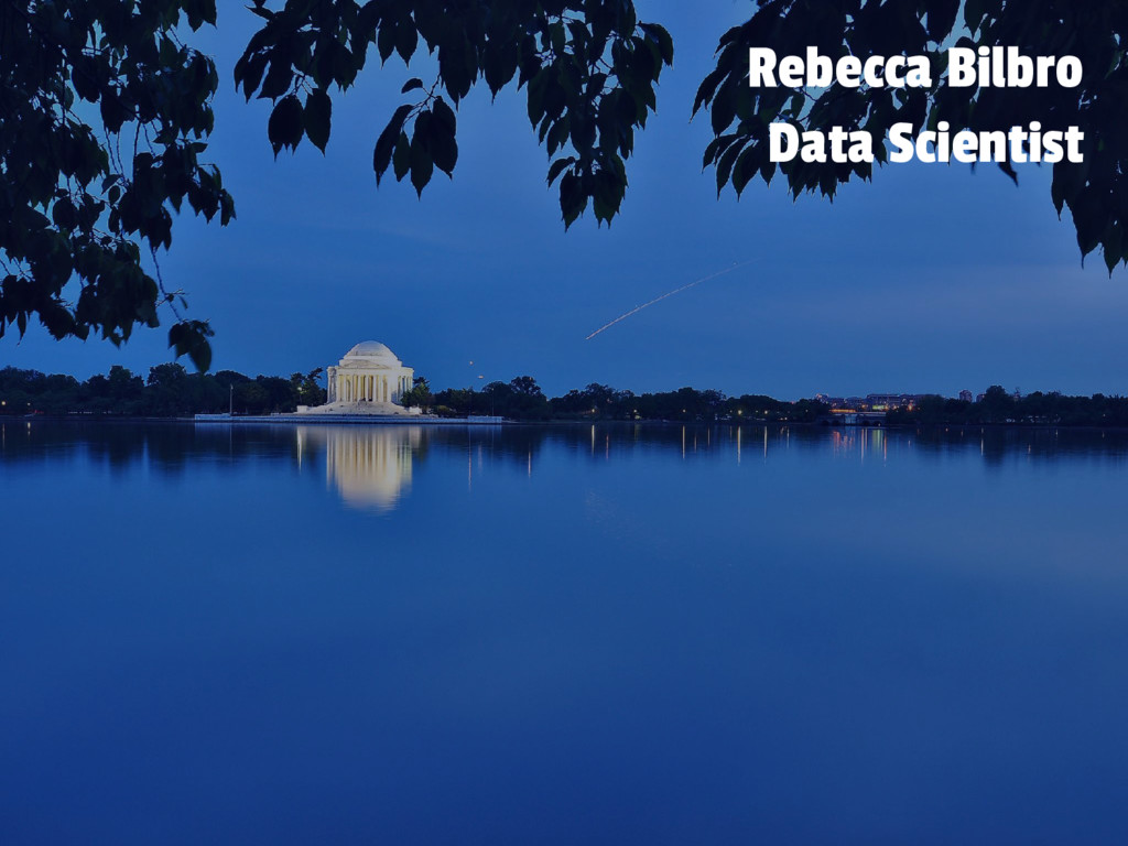 Rebecca Bilbro Data Scientist