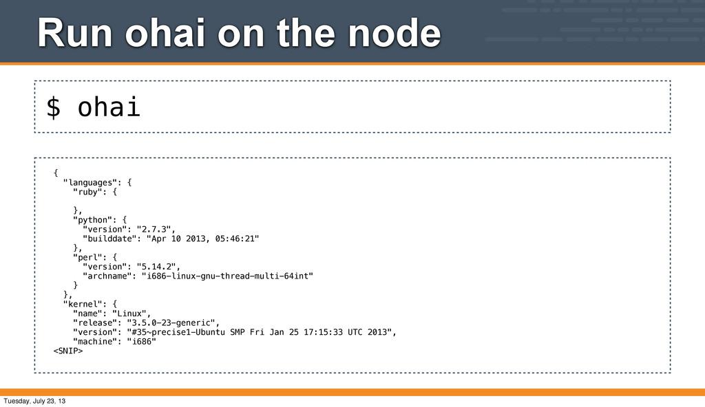 "$ ohai Run ohai on the node { ""languages"": { ""r..."