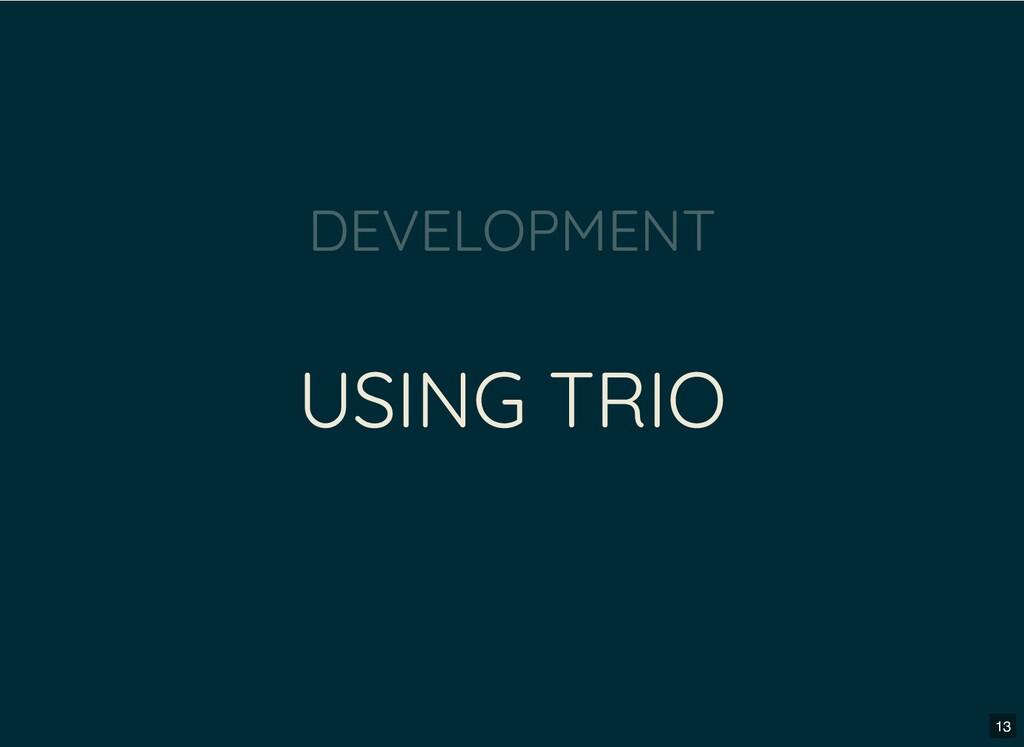 USING TRIO DEVELOPMENT 13