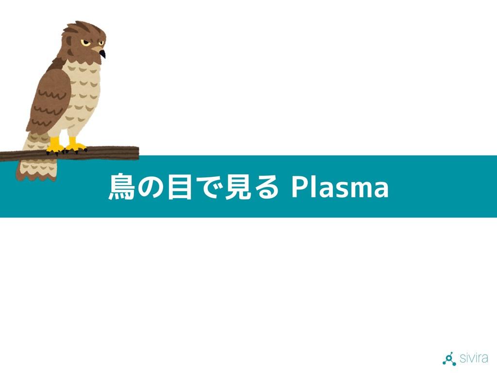 sivira 鳥の目で見る Plasma
