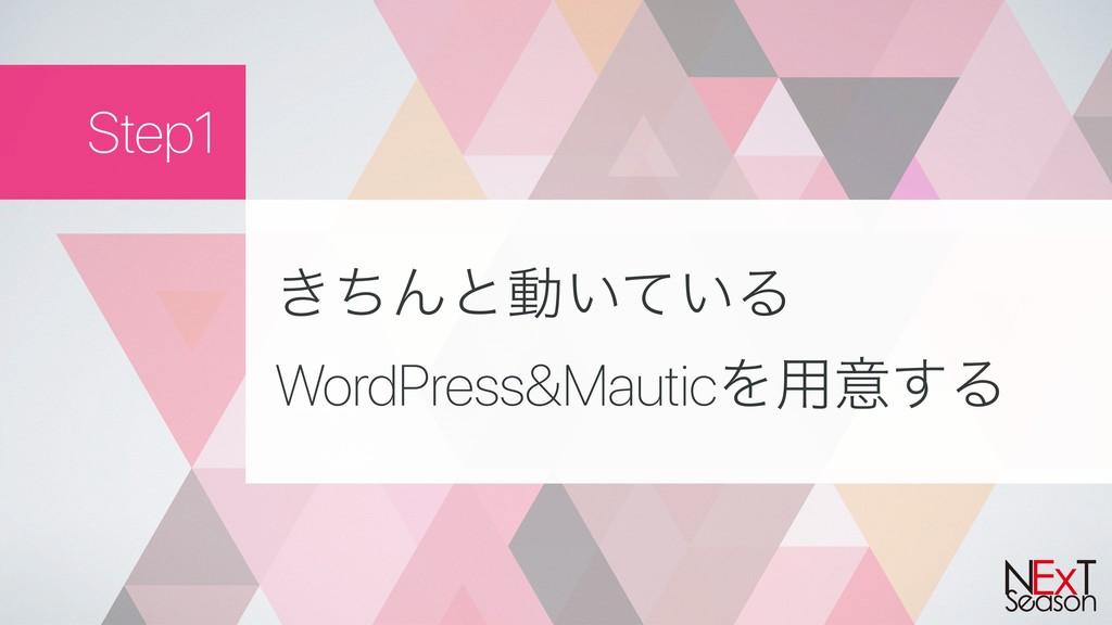 Step1 ͖ͪΜͱಈ͍͍ͯΔ WordPress&MauticΛ༻ҙ͢Δ