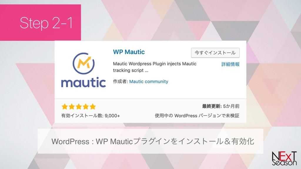 Step 2-1 WordPress : WP MauticϓϥάΠϯΛΠϯετʔϧˍ༗ޮԽ