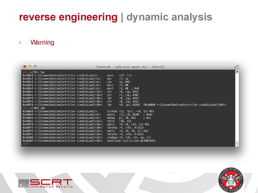 reverse engineering   dynamic analysis › Warning
