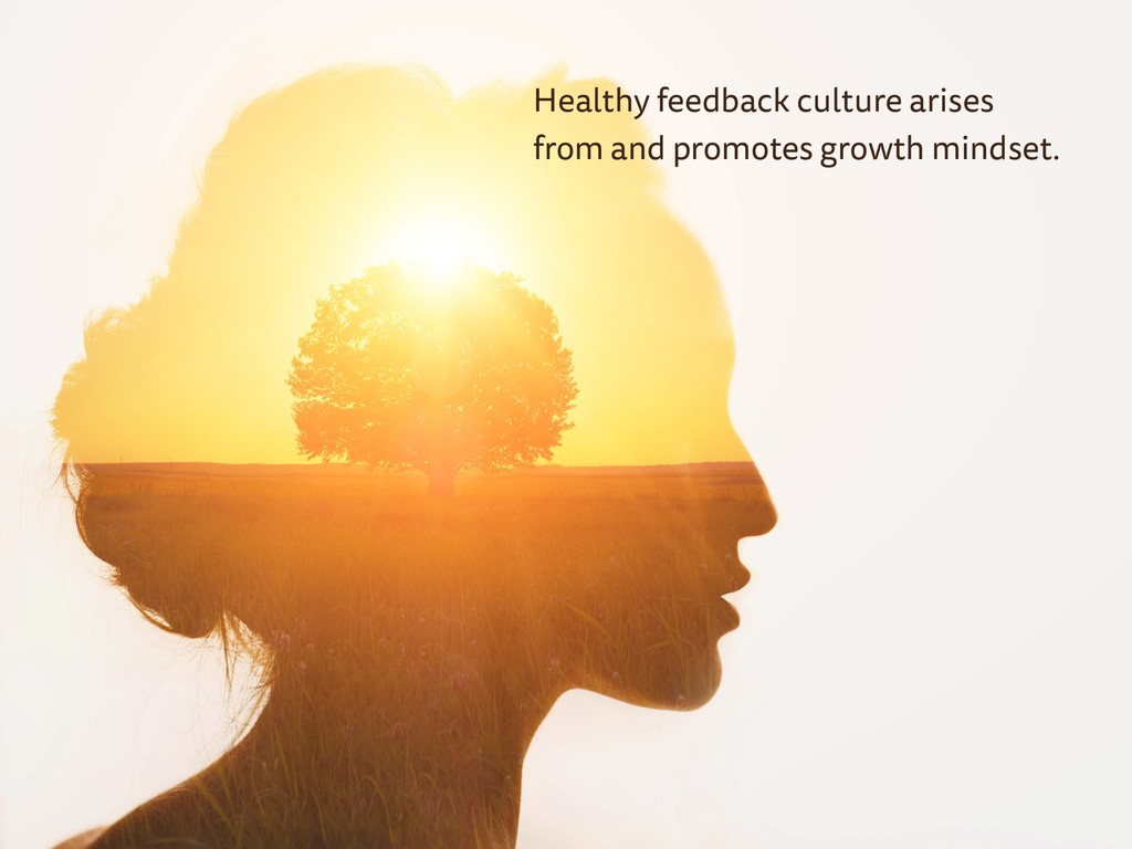 Healthy feedback culture arises from and promot...