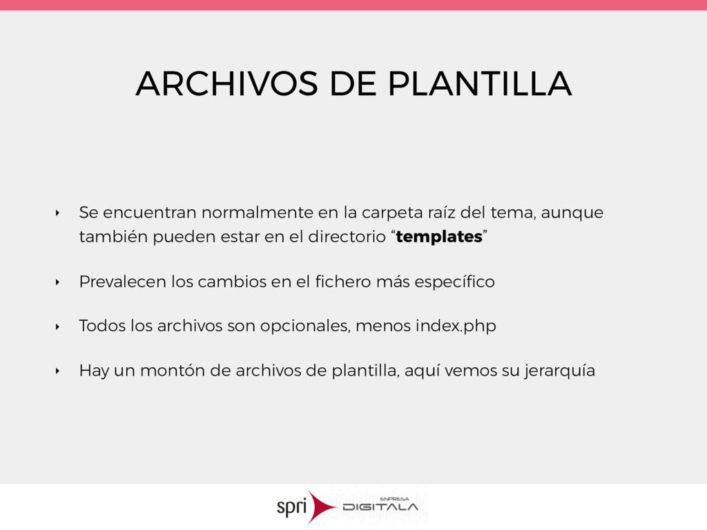 ARCHIVOS DE PLANTILLA ‣ Se encuentran normalmen...