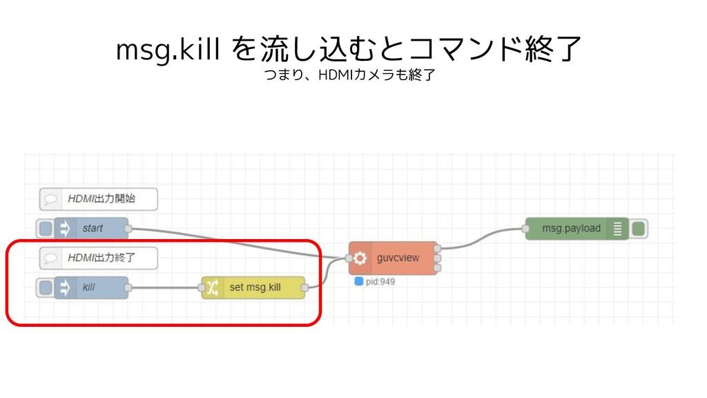 msg.kill を流し込むとコマンド終了 つまり、HDMIカメラも終了