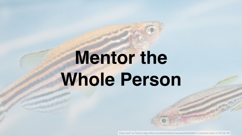 """Mentor the Whole Person """"Danio rerio"""" by Thierr..."""