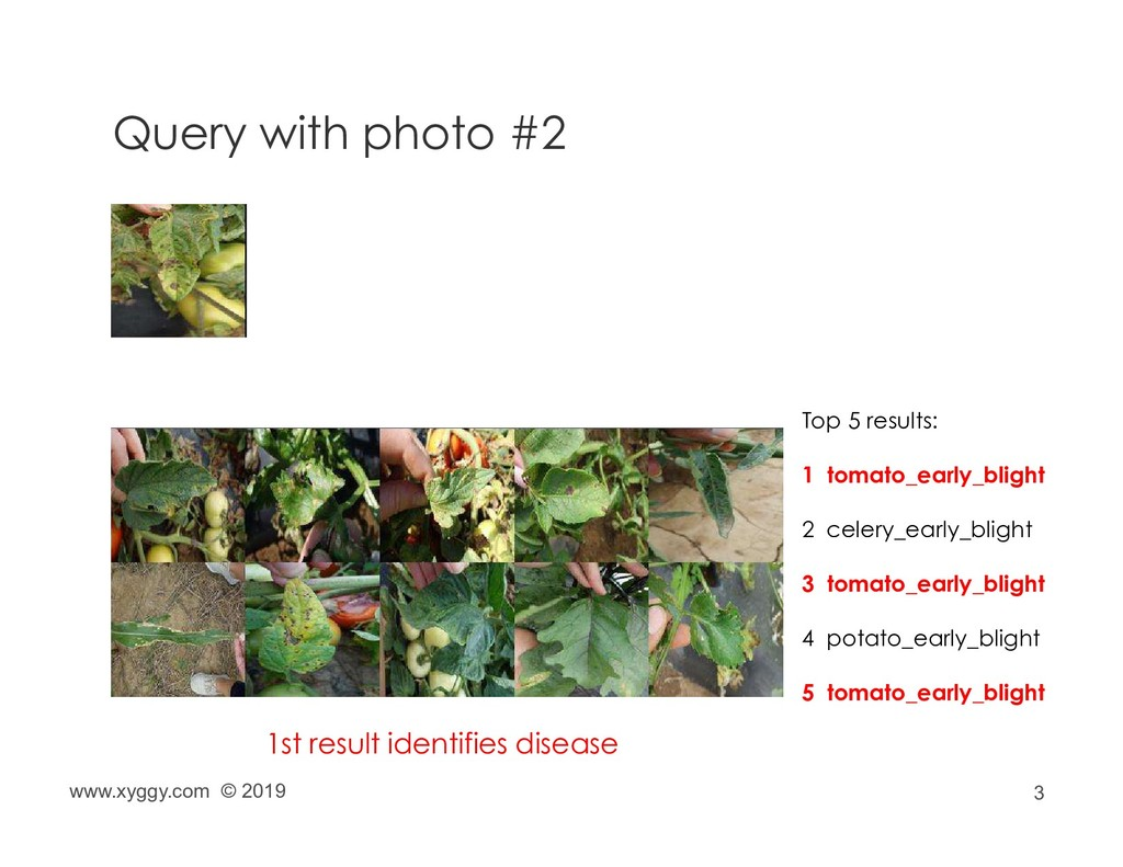 3 Query with photo #2 Top 5 results: 1 tomato_e...