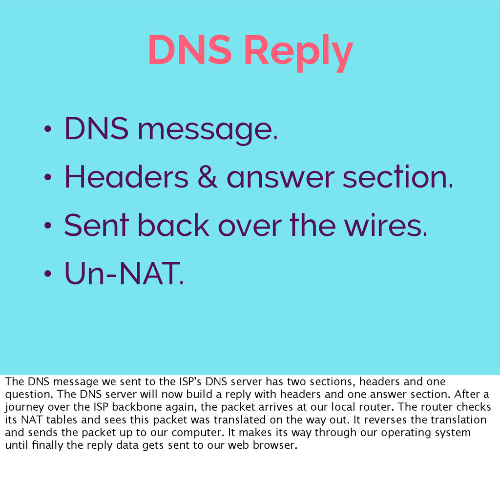 DNS Reply • DNS message. • Headers & answer sec...