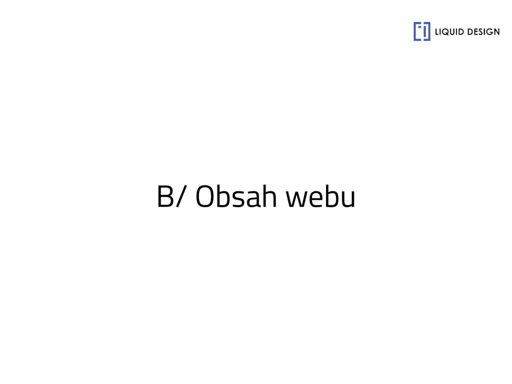 B/ Obsah webu