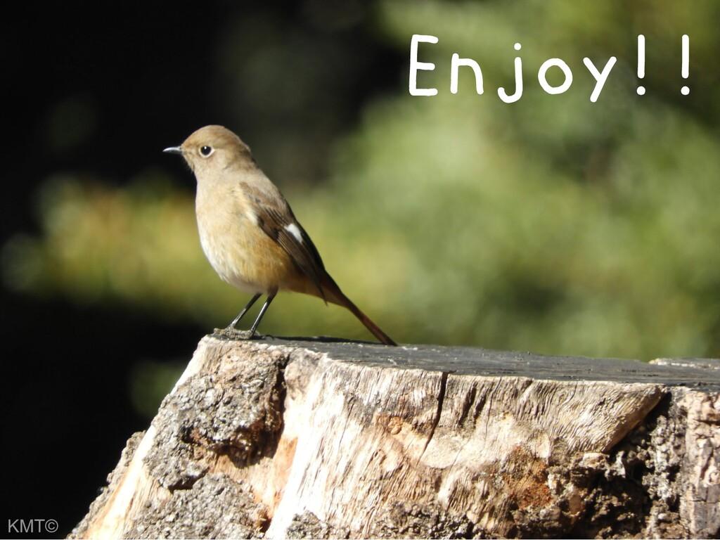 Enjoy!! KMT©