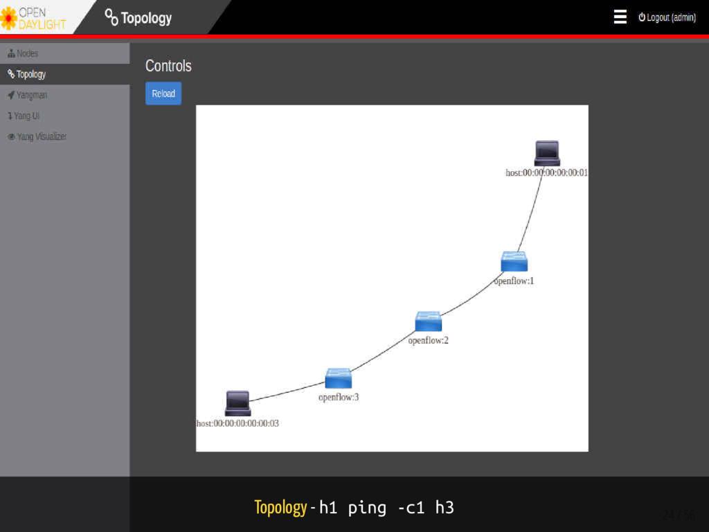 Topology - h1 ping -c1 h3 24 / 56