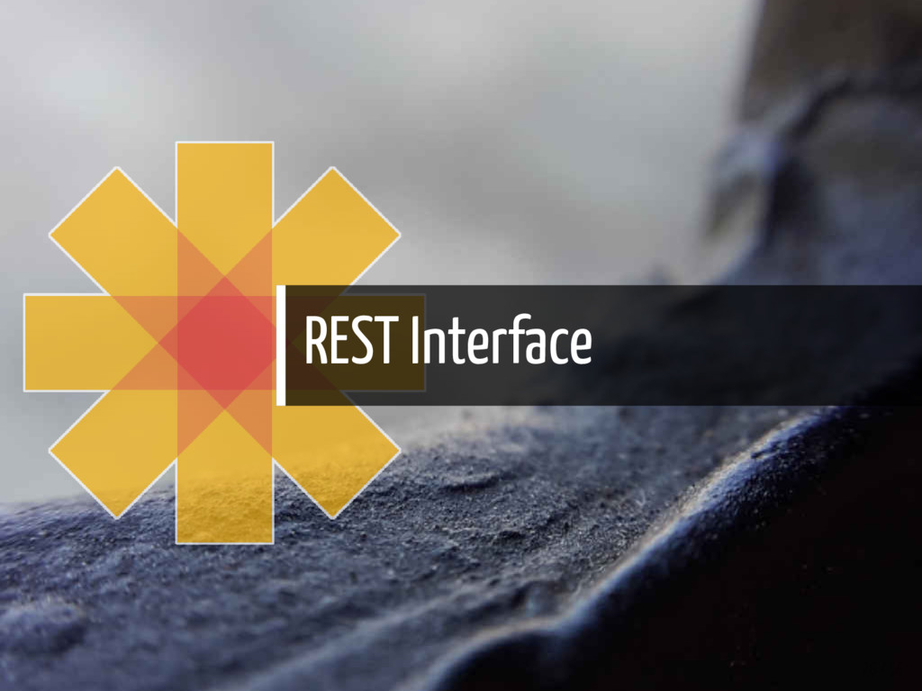 REST Interface 26 / 56
