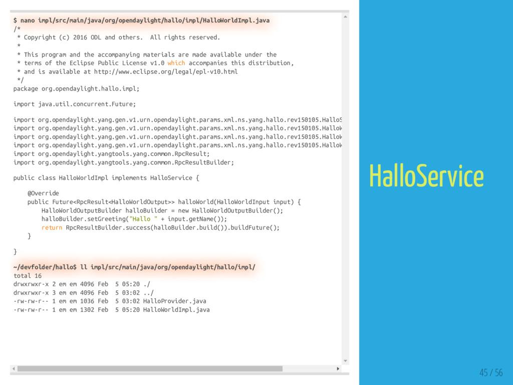 $ nano impl/src/main/java/org/opendaylight/hall...