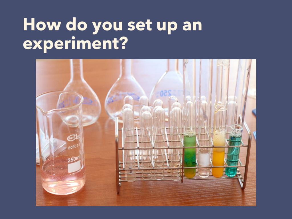 How do you set up an experiment?