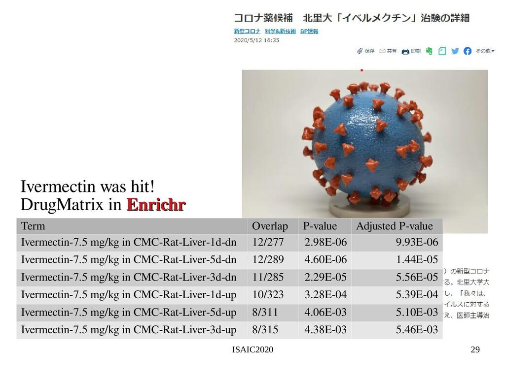 ISAIC2020 29 Term Overlap P-value Adjusted P-va...