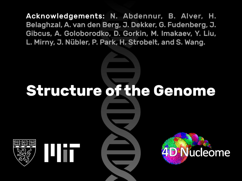 Structure of the Genome Acknowledgements: N. Ab...