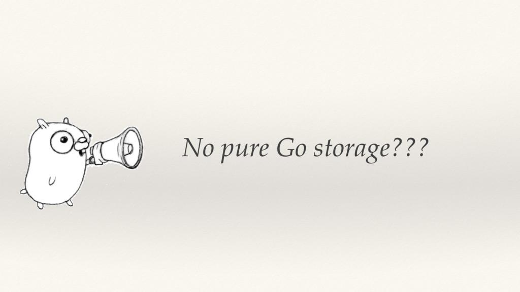 No pure Go storage???