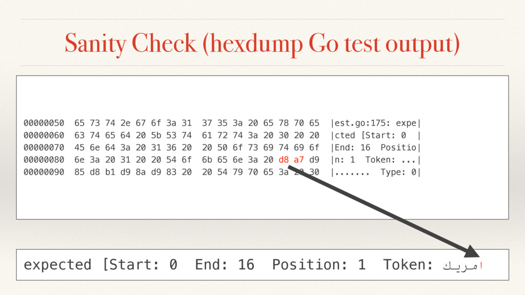 Sanity Check (hexdump Go test output) 00000050 ...