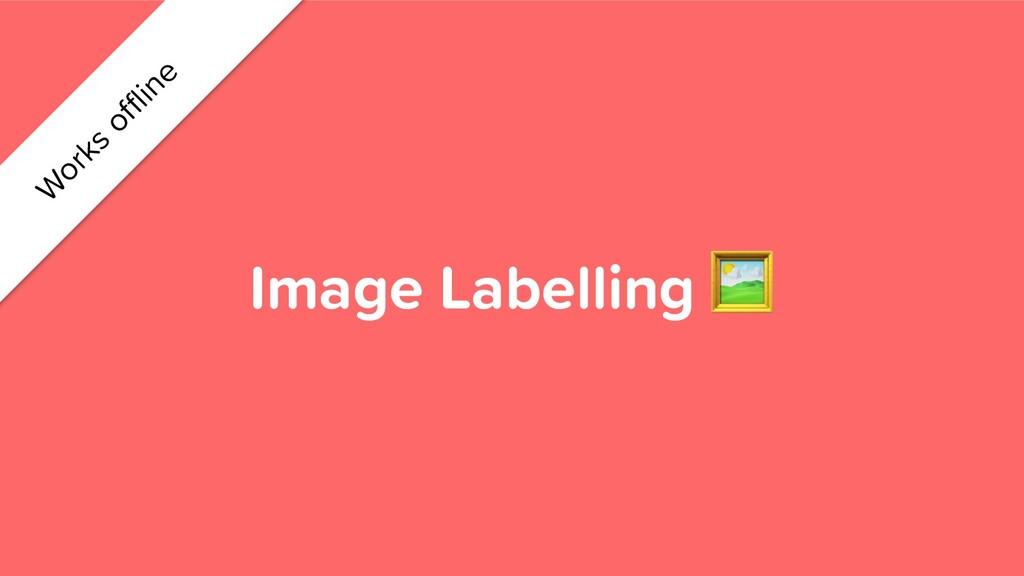 Image Labelling  W orks offline