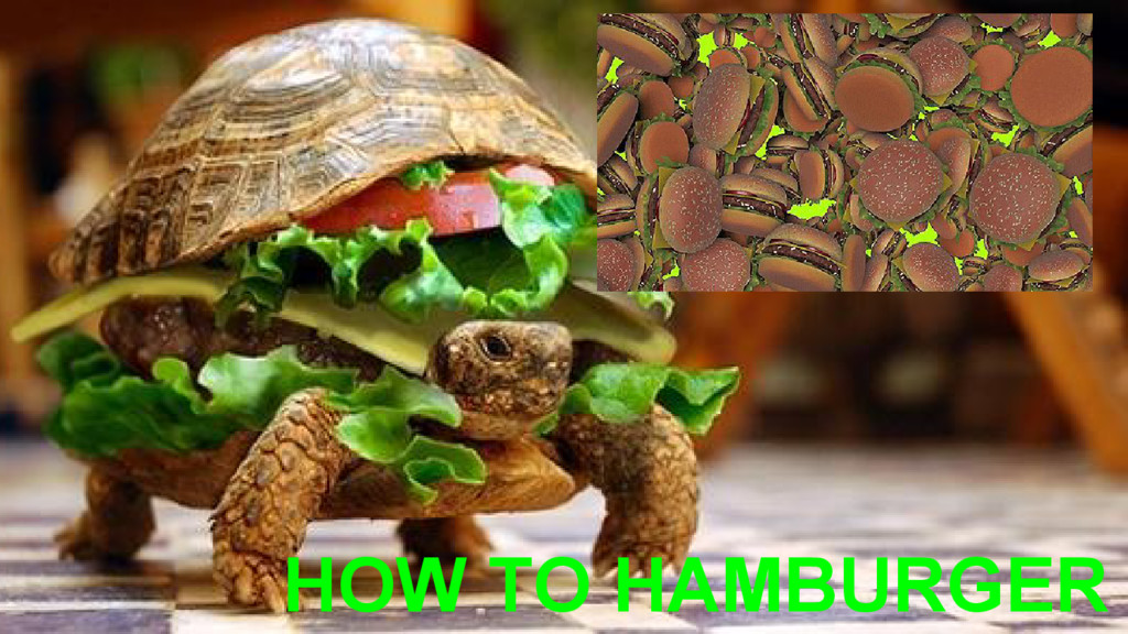 HOW TO HAMBURGER
