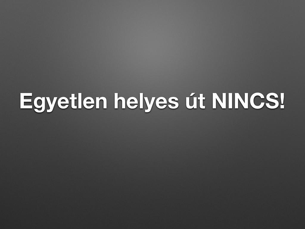 Egyetlen helyes út NINCS!