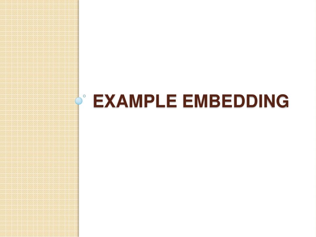 EXAMPLE EMBEDDING