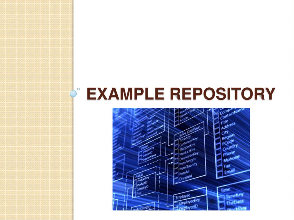 EXAMPLE REPOSITORY
