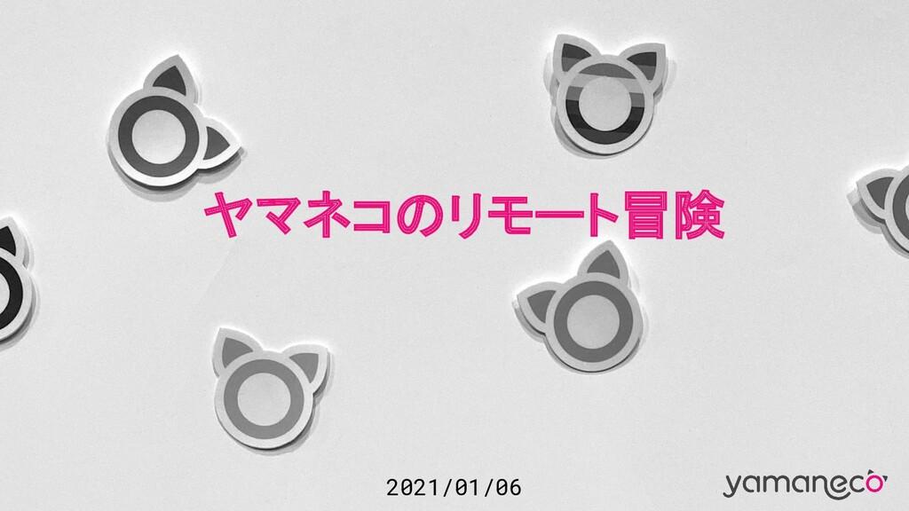 2021/01/06 ヤマネコのリモート冒険