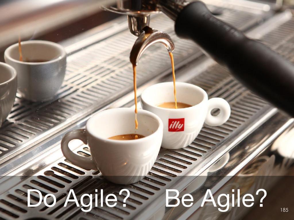Do Agile?  Be Agile? 185