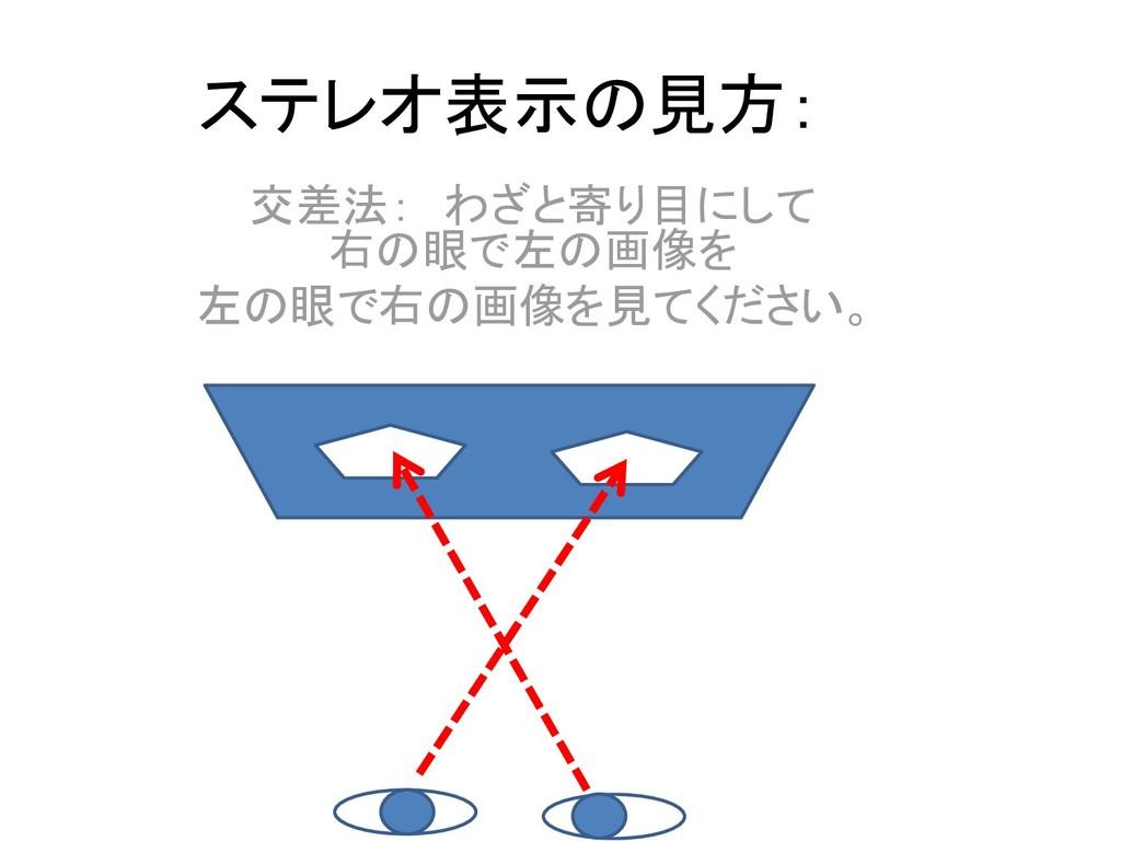 ステレオ表示の見方: 交差法: わざと寄り目にして 右の眼で左の画像を 左の眼で右の画像を見て...