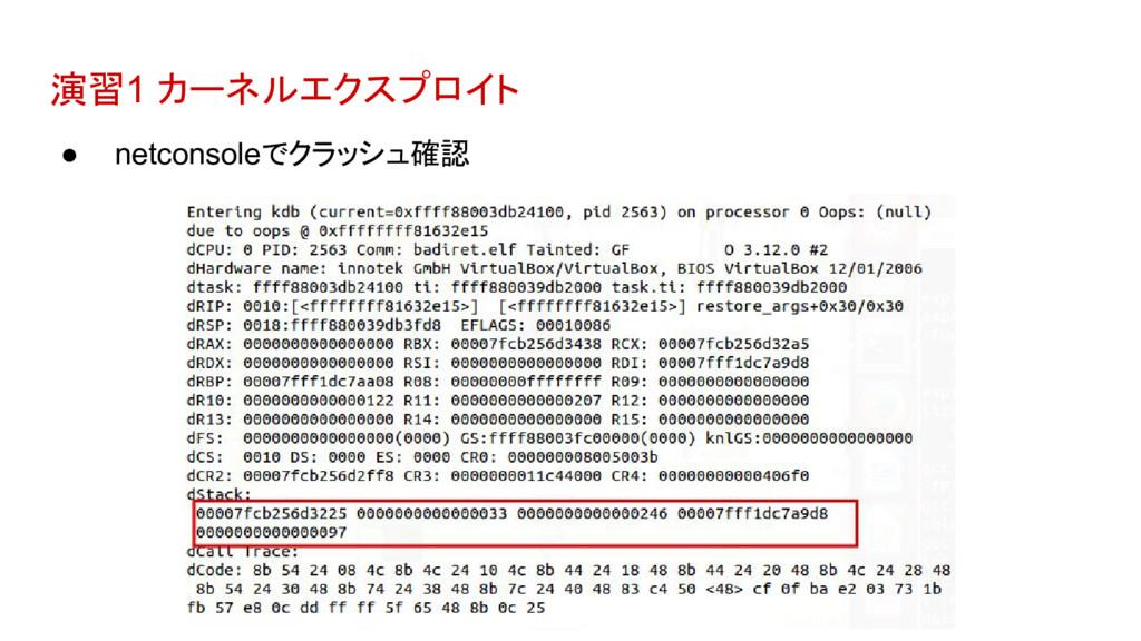 演習1 カーネルエクスプロイト ● netconsoleでクラッシュ確認