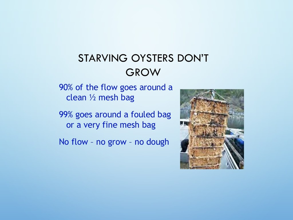 STARVING OYSTERS DON'T GROW 90% of the flow goe...