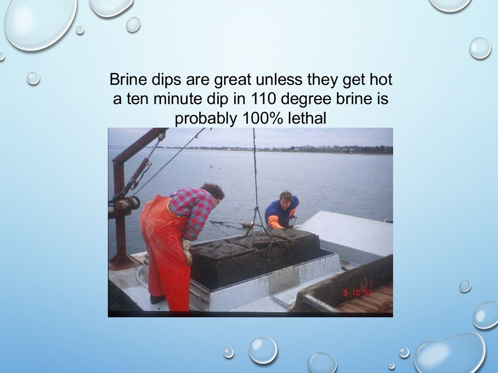 Brine dips are great unless they get hot a ten ...