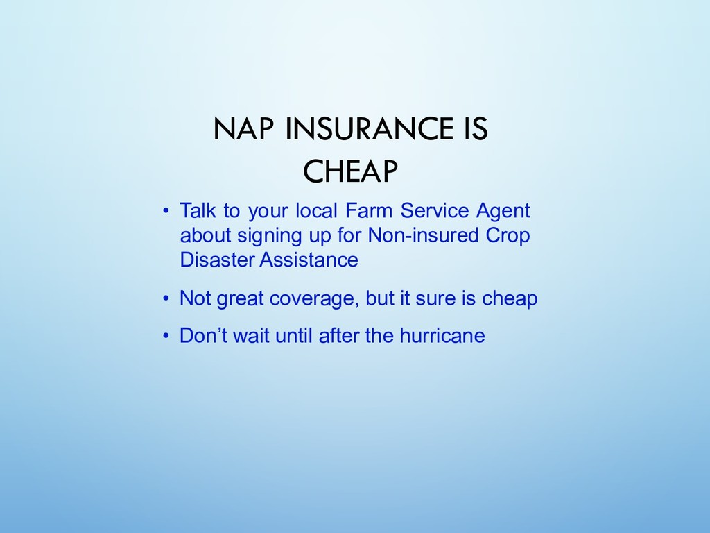 NAP INSURANCE IS CHEAP • Talk to your local Far...