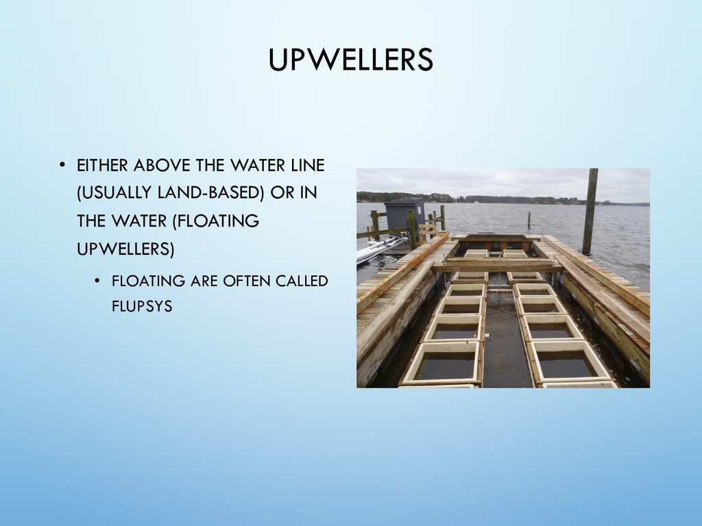 UPWELLERS • EITHER ABOVE THE WATER LINE (USUALL...