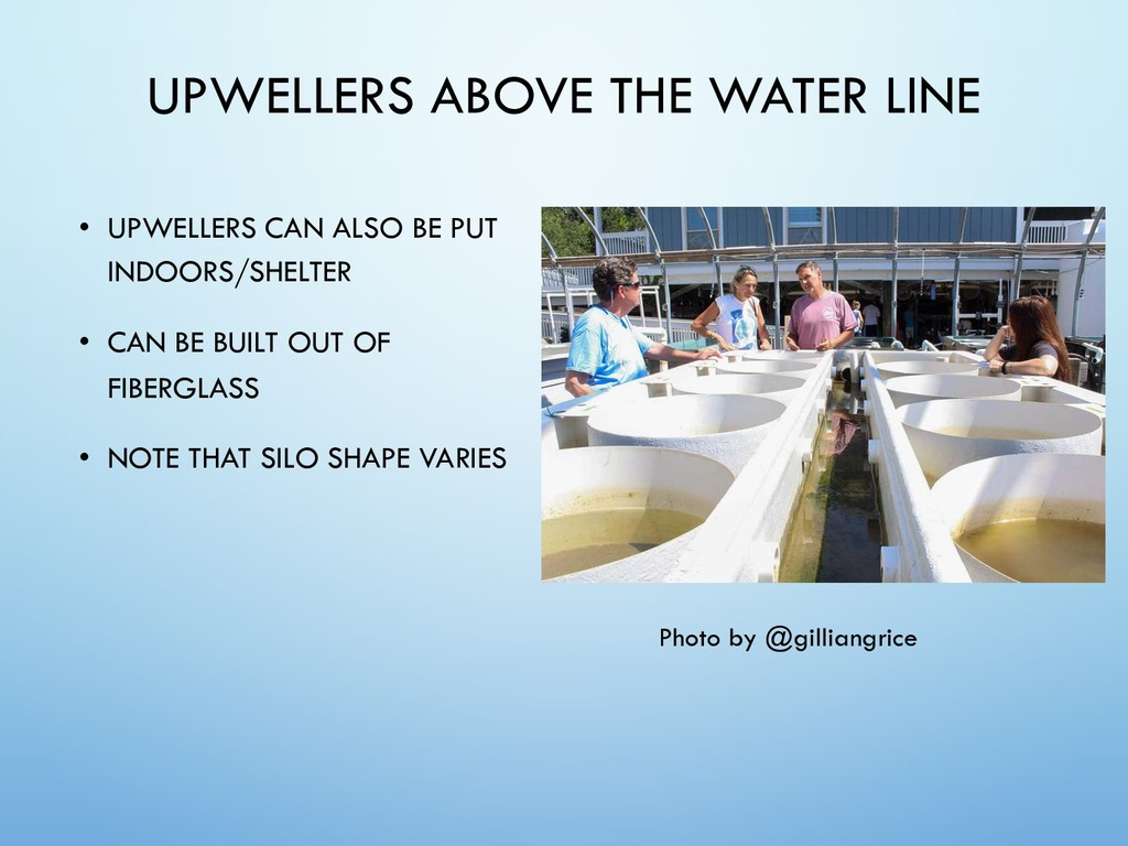 UPWELLERS ABOVE THE WATER LINE • UPWELLERS CAN ...