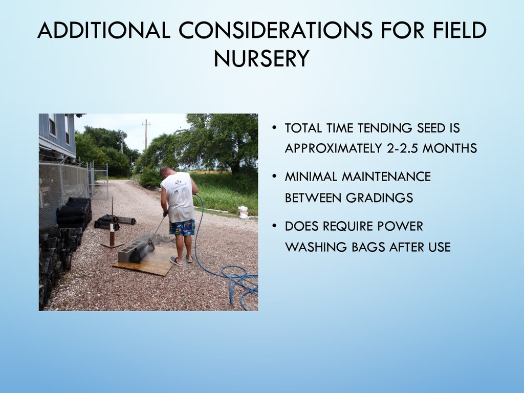 ADDITIONAL CONSIDERATIONS FOR FIELD NURSERY • T...