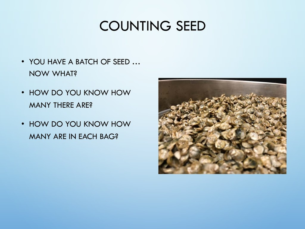 COUNTING SEED • YOU HAVE A BATCH OF SEED … NOW ...