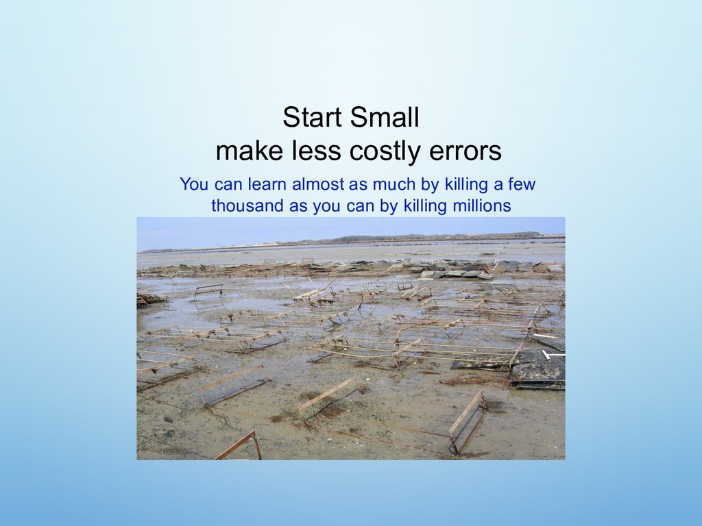 Start Small make less costly errors You can lea...