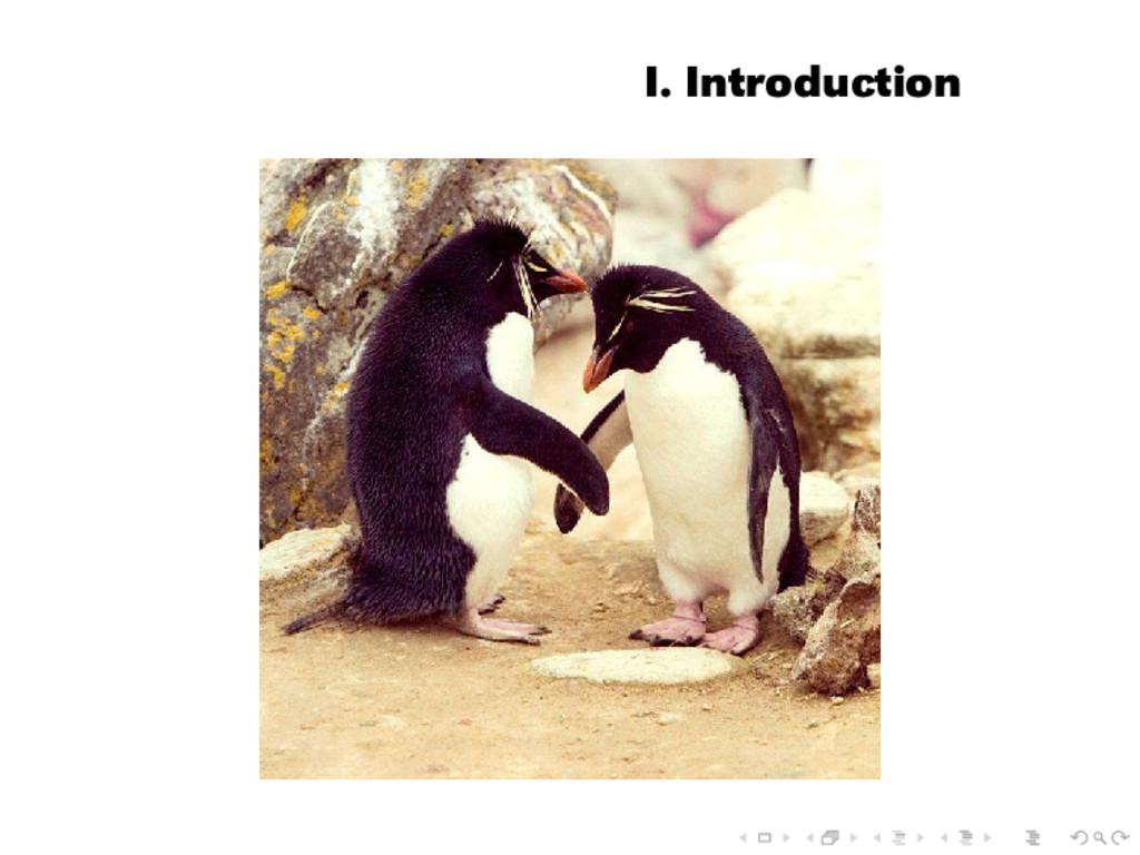 I. Introduction