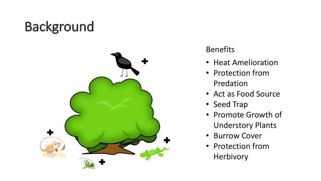 Background • Heat Amelioration • Protection fro...