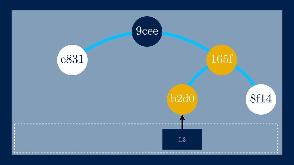 165f 8f14 L3 e831 b2d0 9cee b2d0