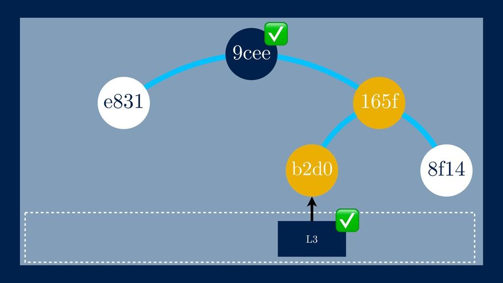 165f 8f14 L3 e831 b2d0 9cee ✅ ✅ b2d0