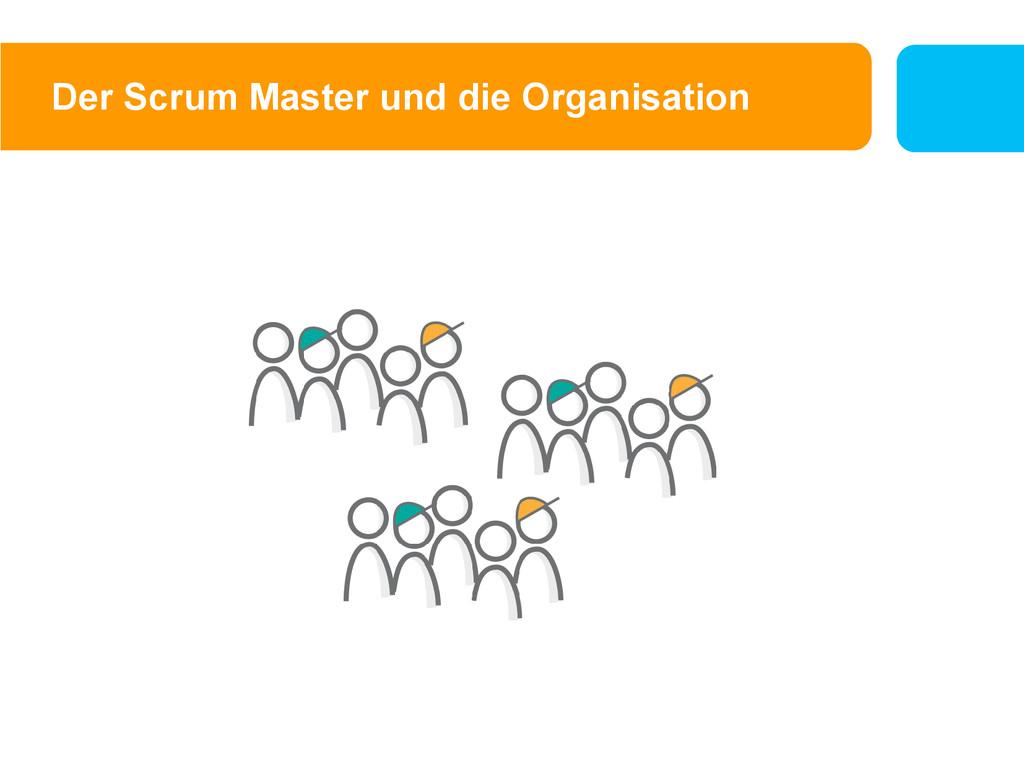 Der Scrum Master und die Organisation