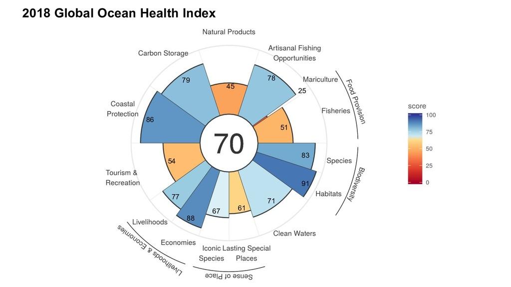 2018 Global Ocean Health Index 79 45 78 51 25 8...