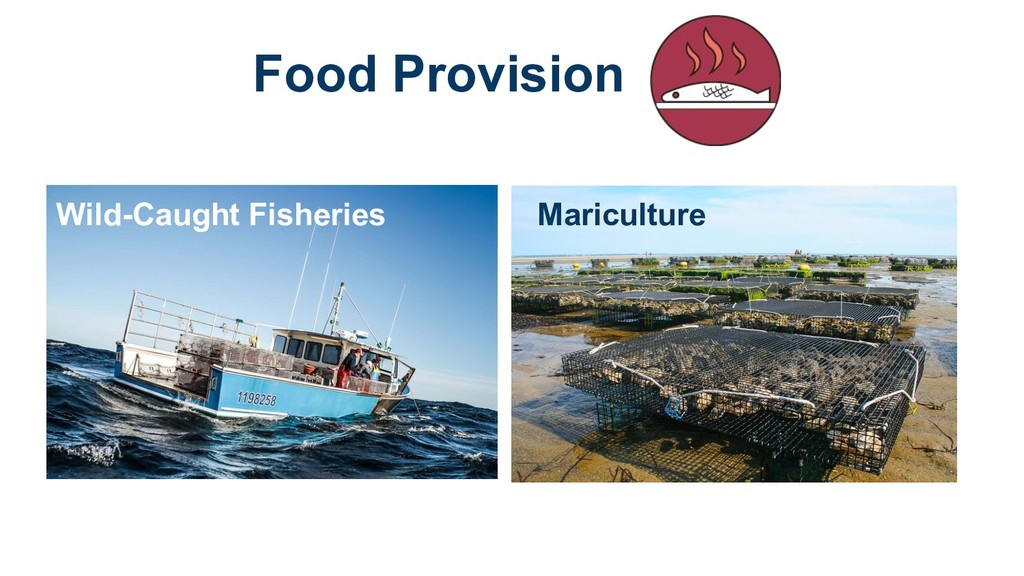 Food Provision Wild-Caught Fisheries Mariculture