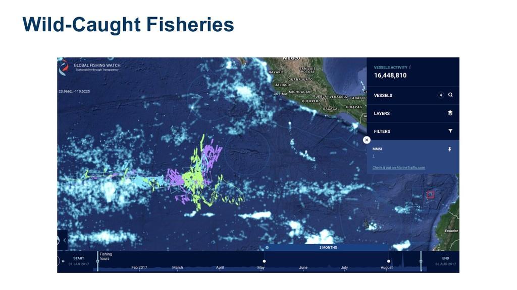 Wild-Caught Fisheries