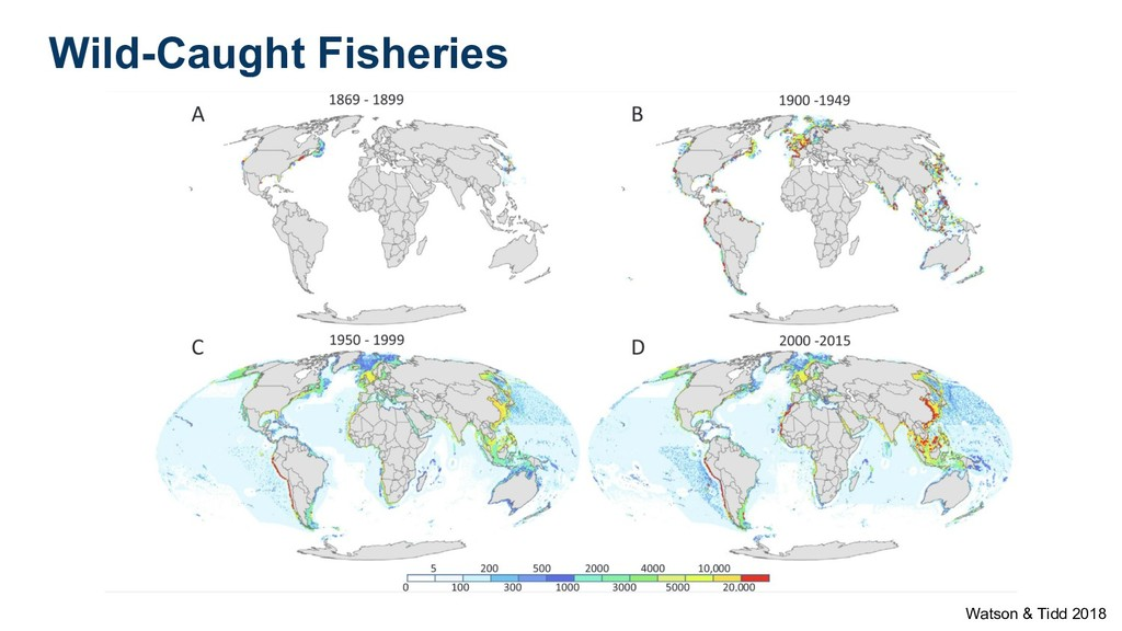 Wild-Caught Fisheries Watson & Tidd 2018
