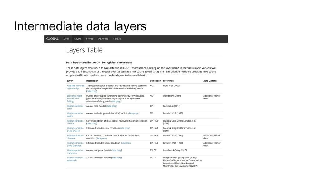 Intermediate data layers
